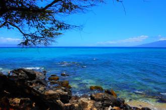 Hawaii Landscape (2 of 13)