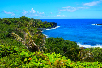 Hawaii Landscape (4 of 13)