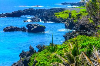 Hawaii Landscape (5 of 13)